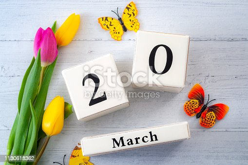 First day of Spring and springtime equinox concept theme with block calendar set on March 20, two yellow tulips and one pink tulip and butterflies isolated on a rustic white wooden background