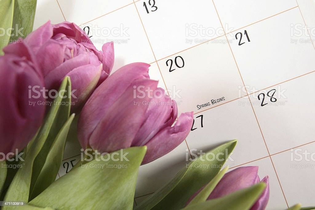 First Day of Spring royalty-free stock photo