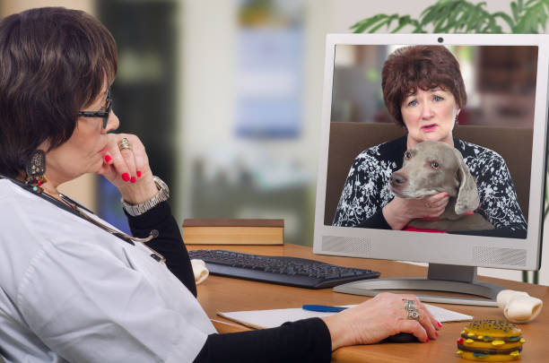 First dog owner visit to virtual veterinarian stock photo