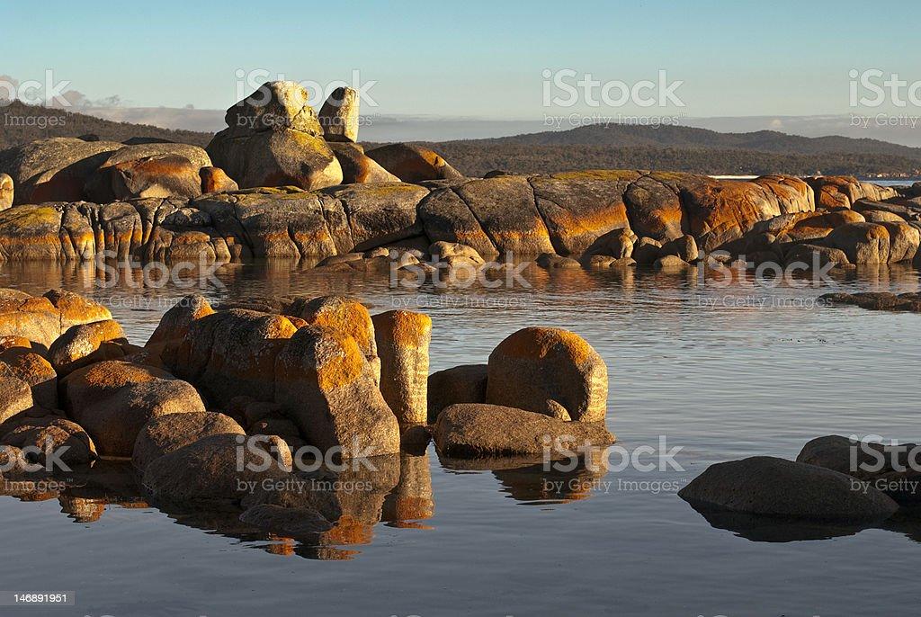 First light on orange lichen rocks, Binalong Bay, Tasmania. stock photo