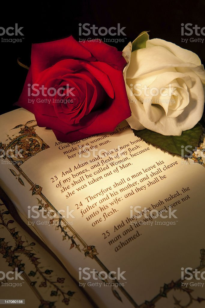First marriage in the bible royalty-free stock photo