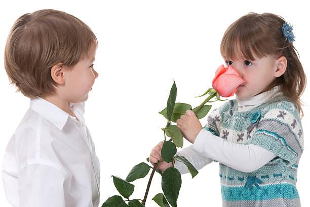 Erste rose von bewundere – Foto
