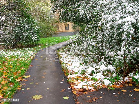 istock First snow at city 861296000