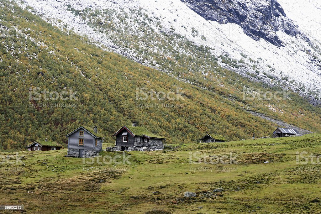 Erste Schnee in Norwegen Lizenzfreies stock-foto