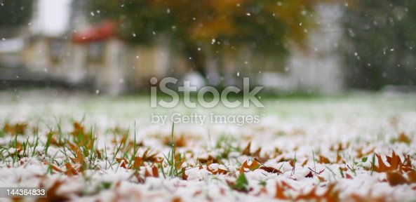 First snow on a yellow autumn leaves and on a grass