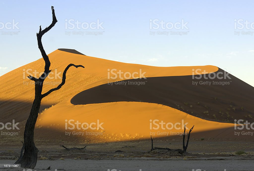 First sunlight on the dunes royalty-free stock photo