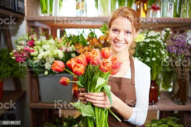 Photo libre de droit de Premier Tulipes banque d'images et plus d'images libres de droit de Adulte
