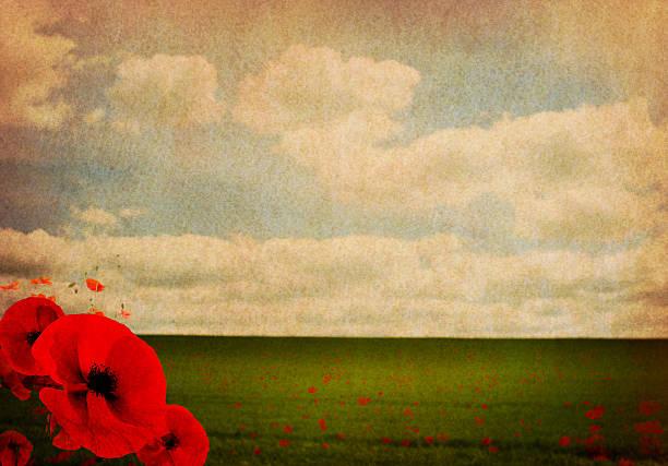 Première guerre mondiale Première guerre mondiale abstrait avec des coquelicots - Photo