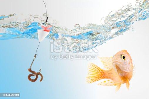 istock Fish about to bite fishing bait with rainworm 160334353