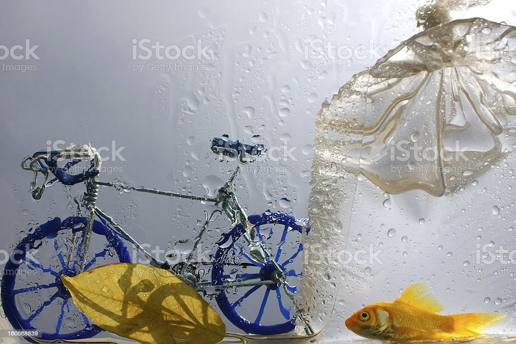 Fish And Bike royalty-free stock photo