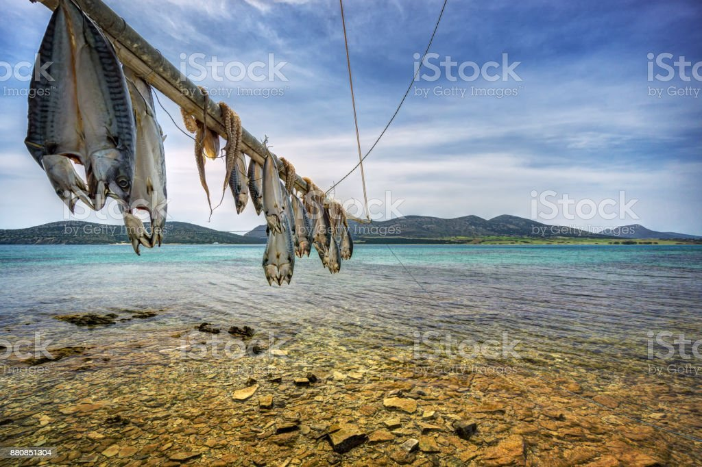 Fish and Octopus hanging to dry in Antiparos island Cyclades, Greece stock photo