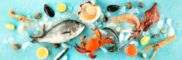 Fish and seafood panorama, a flatlay overhead shot on a blue background. Fresh fish, shrimps and prawns, crab, squid, mussels and clams, scallop and caviar stock photo