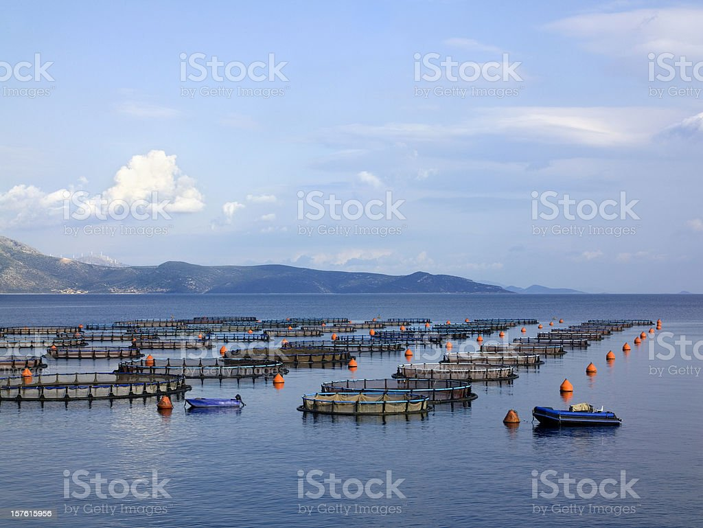 Fish and shrimp farms in the open sea stock photo