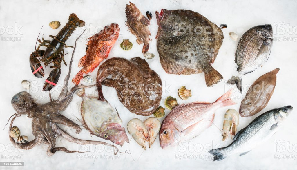 Fish Arrangement on Ice stock photo