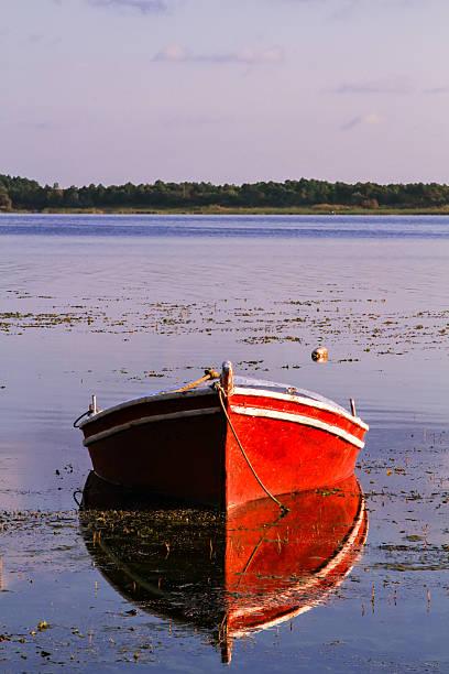Fisch-Boot – Foto