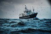 istock Fish boat vessel fishing in a rough sea: industrial trawler 1253824909