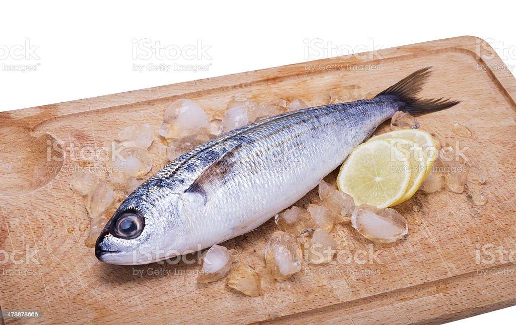 fish bogue with lemon stock photo