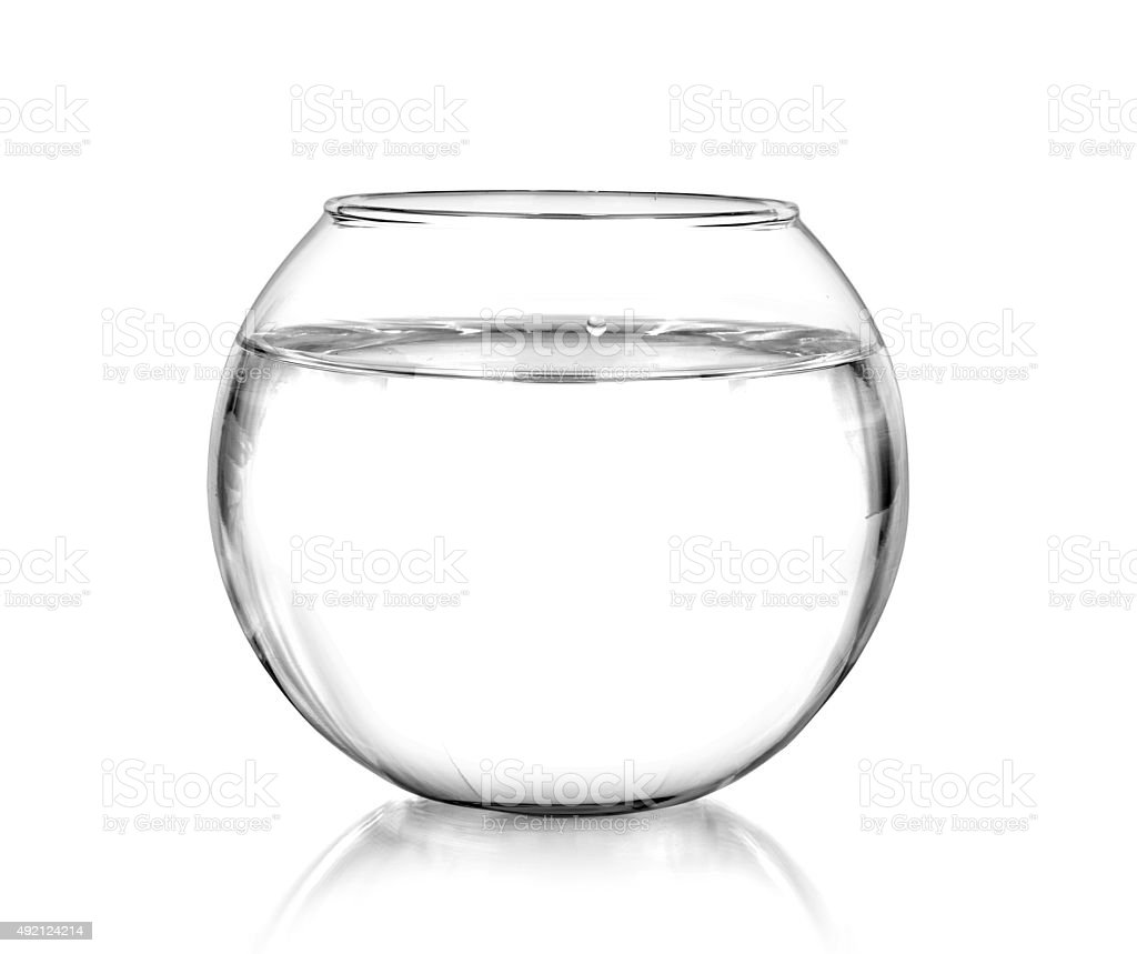 Fish bowl stock photo