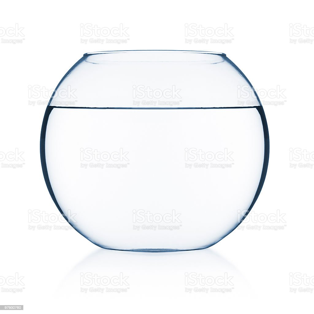 Fish Bowl stock photo