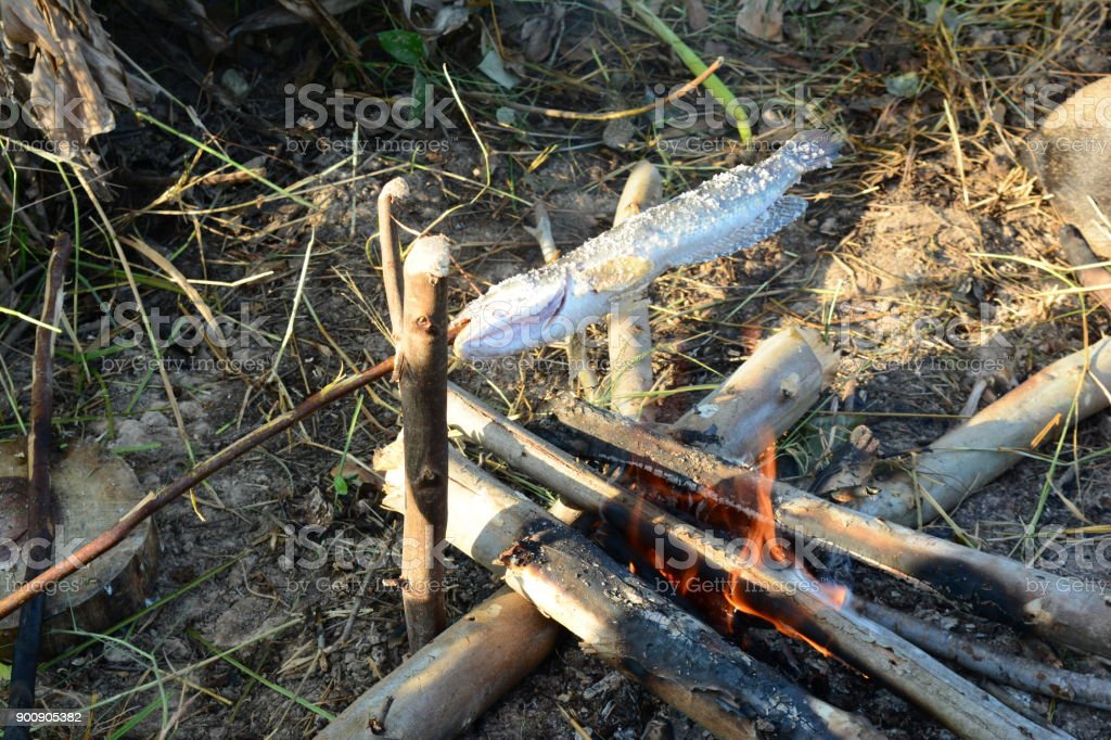 Fish Cooking With Hot Flame On Camping Time In The Morning Royalty Free Stock Photo