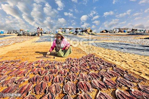 155674939 istock photo Fish drying in Negombo, Sri Lanka 1212502638
