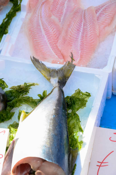 Fish exposed in market stock photo