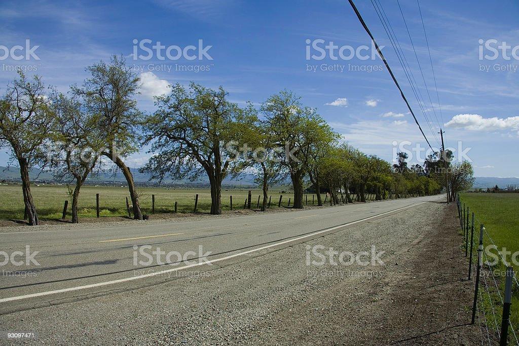 Fish Eye Country Road royalty-free stock photo
