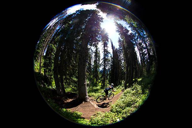 fish eye-mountainbiker - kanada rundreise stock-fotos und bilder