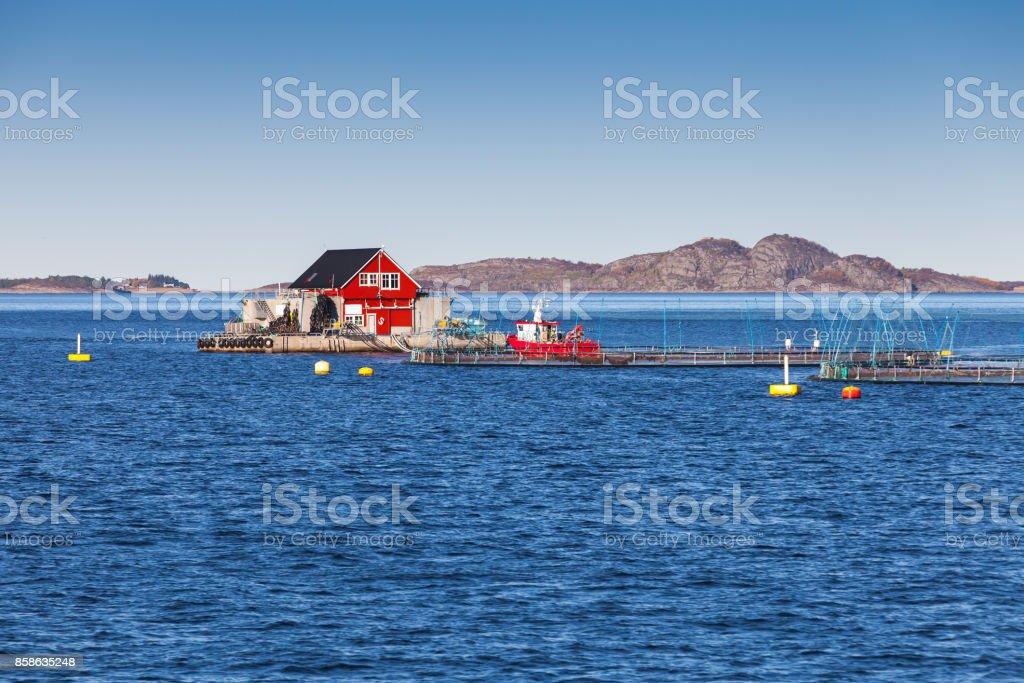 Fish farm for growing salmon, Norway stock photo