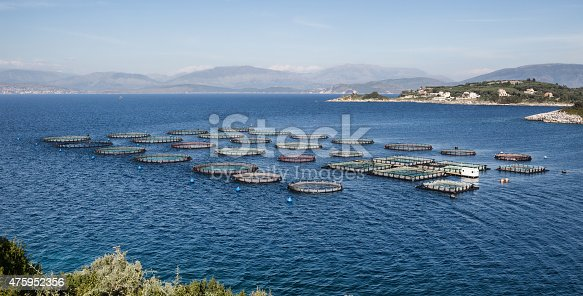 istock Fish Farm with floating cages 475952356