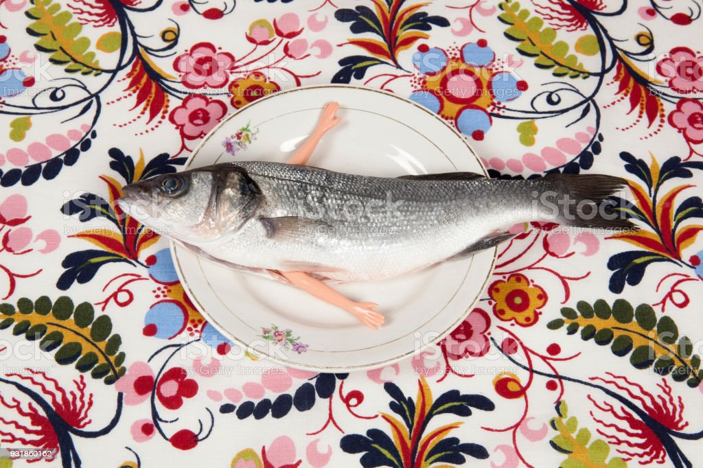 fish flower plate arms doll stock photo