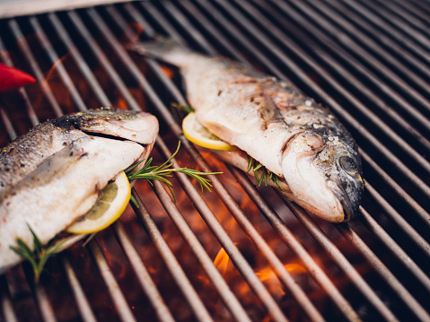 Two whole fresh fish stuffed with lemon slices and rosemary, grilling on a barbecue outdoors
