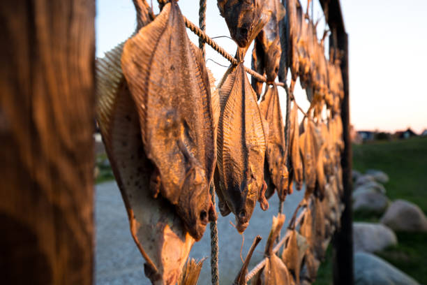 Fish hanging to dry at beach in Denmark stock photo