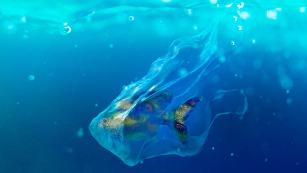 fish in a plastic bag - ocean plastic stock pictures, royalty-free photos & images