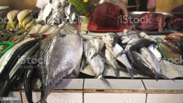 Fish in asian market picture id909392342?b=1&k=6&m=909392342&s=612x612&h=cvx skmdjb895aafchmp 3gppz1wyo rdykvuyl2miy=