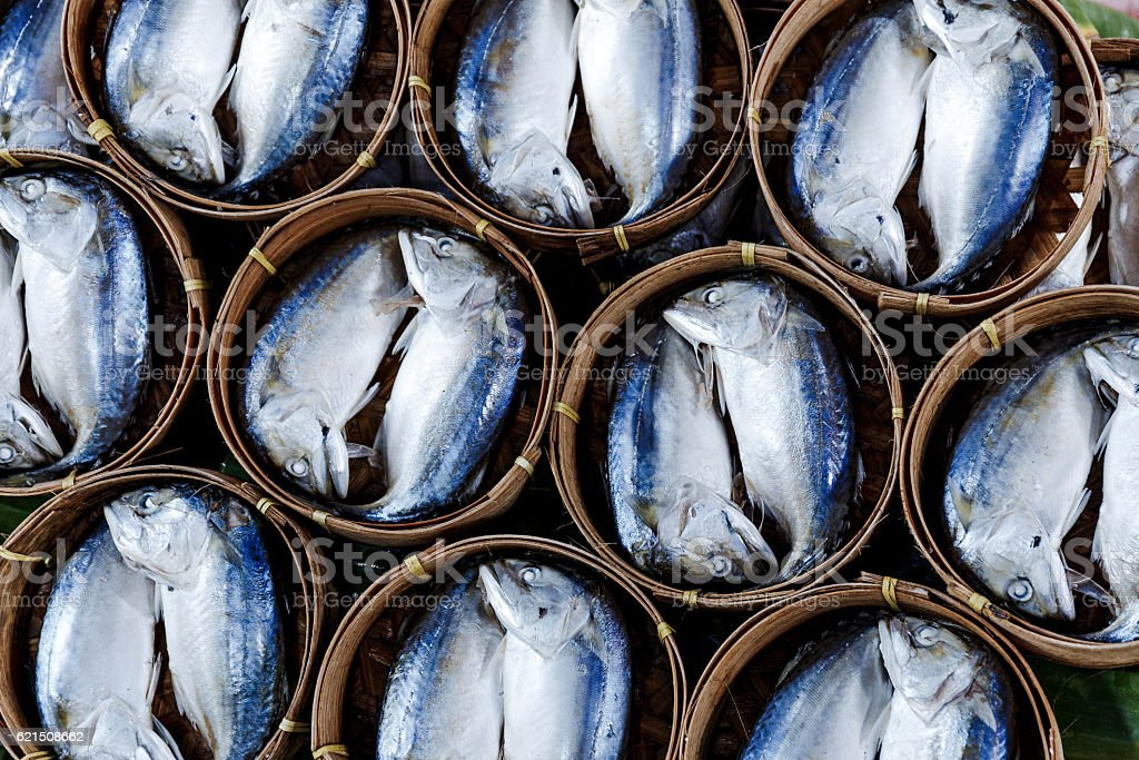 Fish in barrels for sale at a market in Bangkok foto stock royalty-free