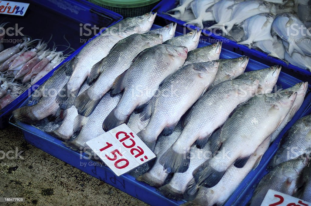 Fish in plastic tray at market royalty-free stock photo