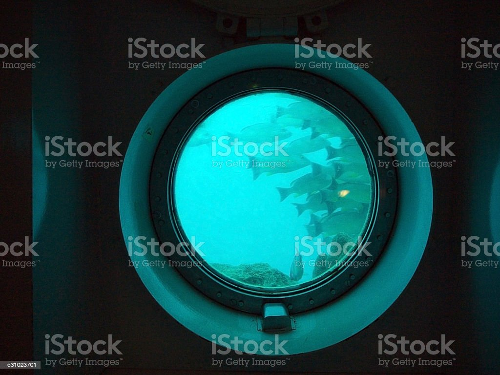 Fish in porthole stock photo