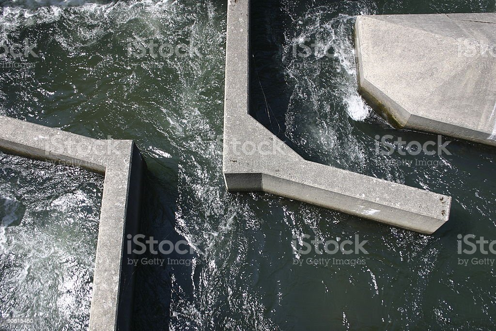 Fish Ladder at the Bonneville Dam. stock photo