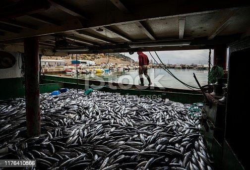 Fish Market, Antalya, Turkey