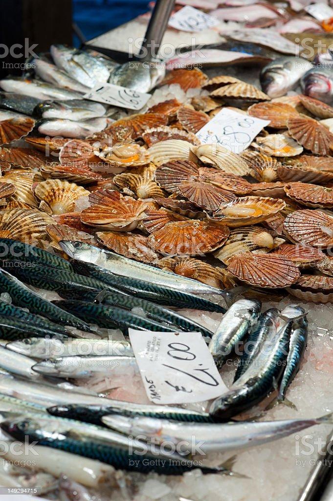 Fish market counter royalty-free stock photo