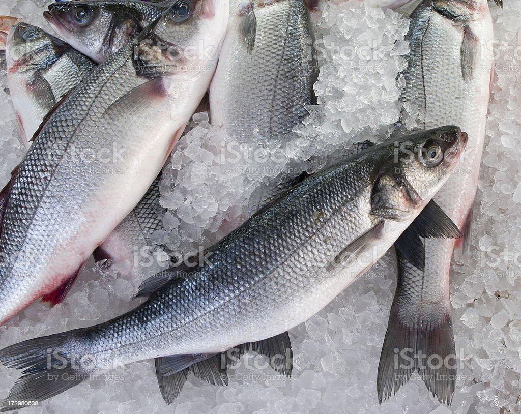 Fish Market Ocean Trout Horiz stock photo