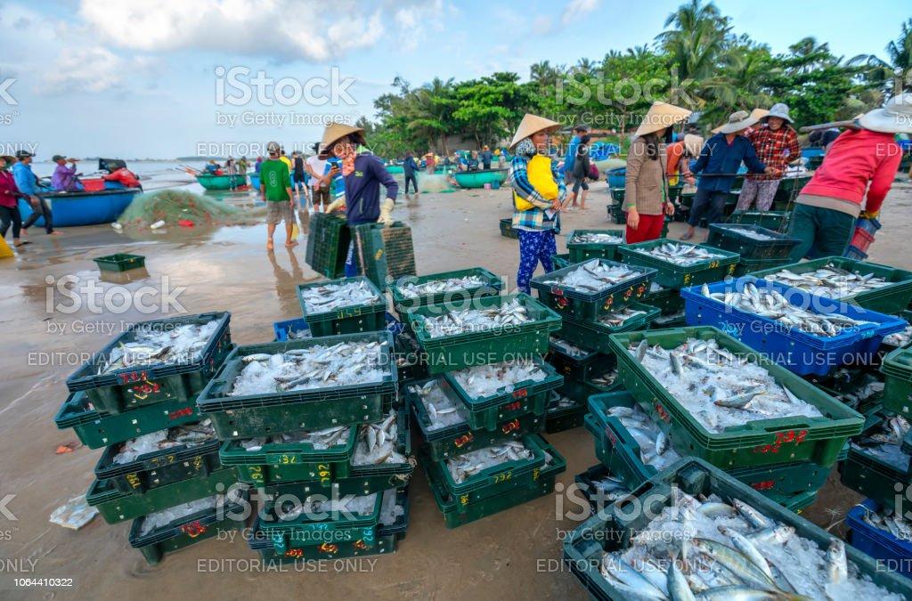 Fischmarkt-Session, die Meere Szene Menschen versammelten sich im Korb Fisch Verkauf – Foto