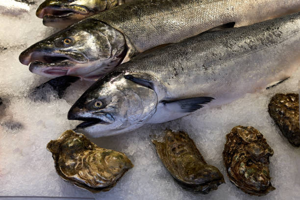 Fish Market With Salmon and Oysters stock photo