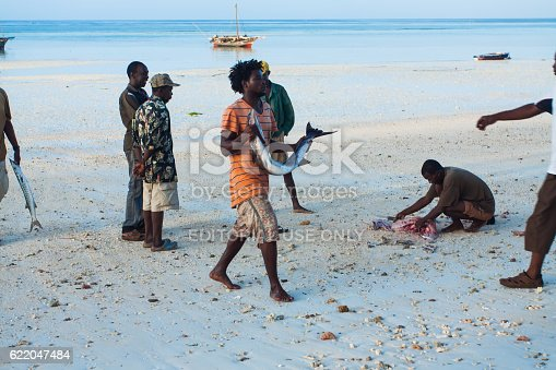 istock Fish market. Zanzibar 622047484