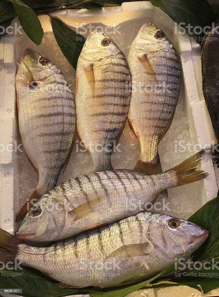 Mercati del pesce-Mormora o a righe Orata (Lithognathus mormyrus foto stock royalty-free