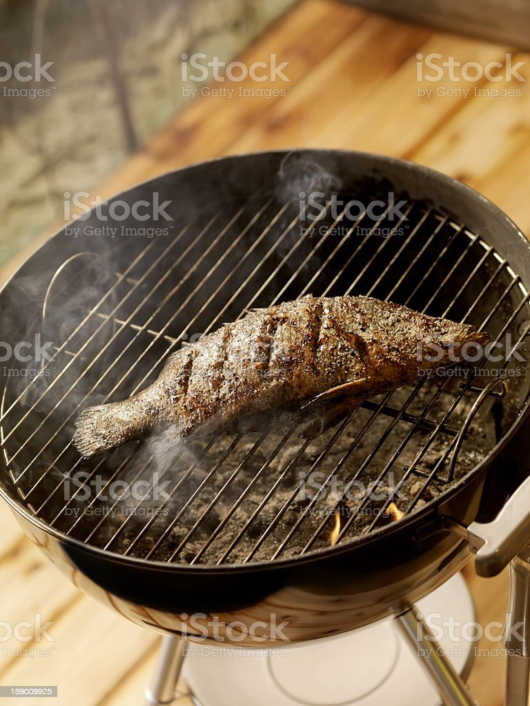 Fish on a Charcoal BBQ (Perch) royalty-free stock photo