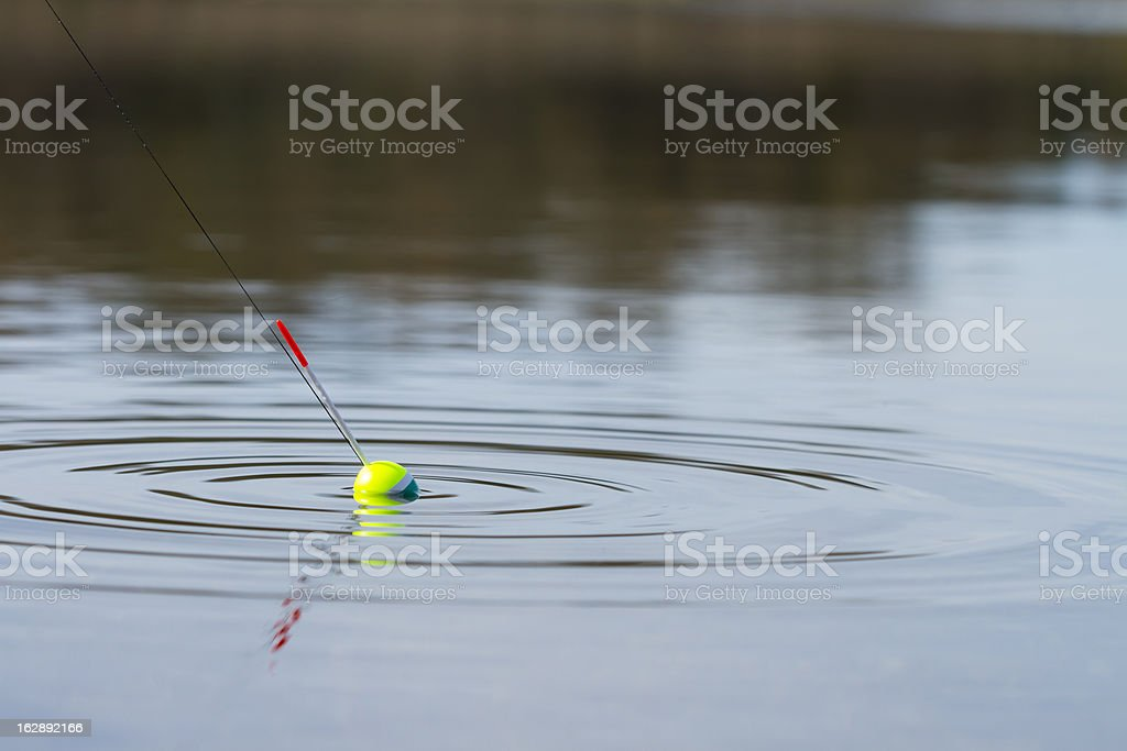 fish on a hook stock photo