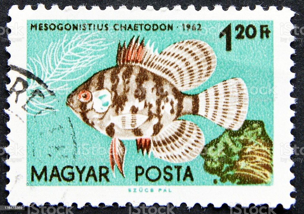 Fish on a stamp royalty-free stock photo