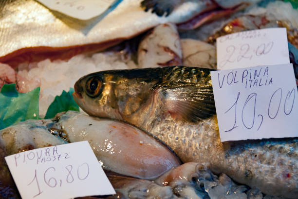 Cтоковое фото Fish on display at Market in Italy